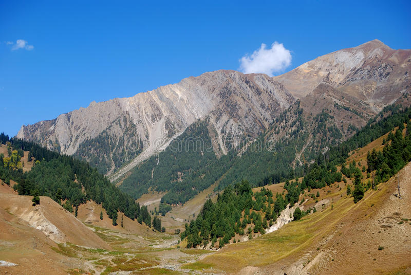 Montanhas, Sonamarg, Kashmir, India fotografia de stock royalty free