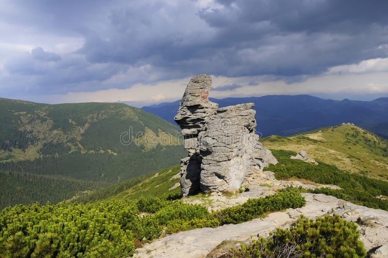 Montanhas verde-clara no verão imagens de stock