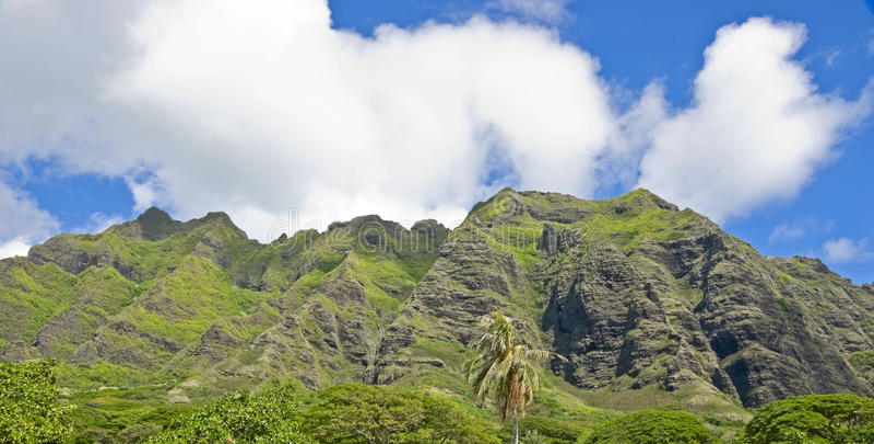 Download Montanhas verdes imagem de stock. Imagem de campo, oahu - 29840853