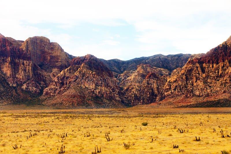 Montanhas vermelhas da rocha que levantam-se do assoalho dourado do deserto fotografia de stock royalty free