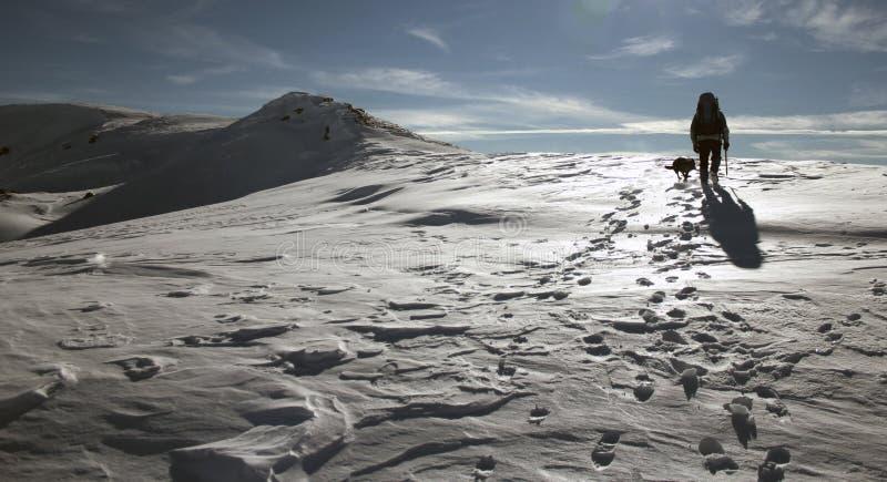 Montanhista da neve imagens de stock