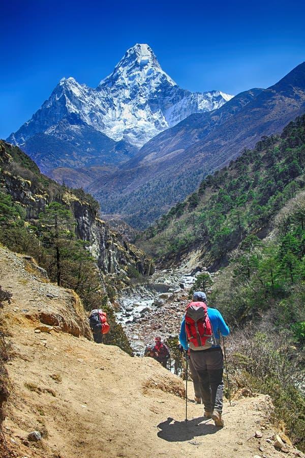 Montanhistas no pico dos Himalayas imagem de stock royalty free