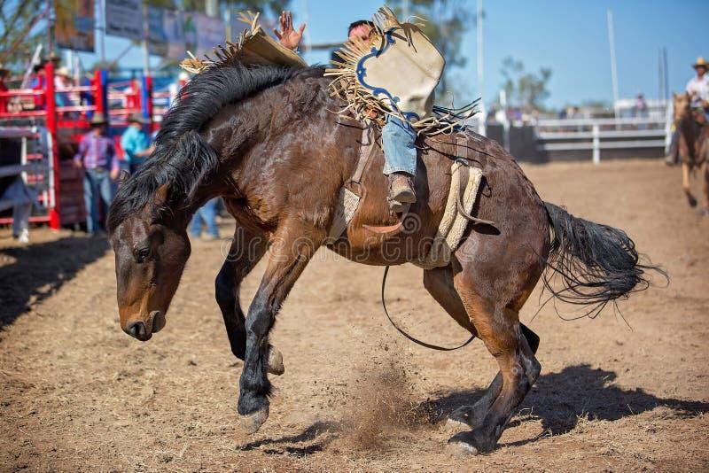 Montar a caballo Bucking a pelo del Bronc en el rodeo del país imagenes de archivo