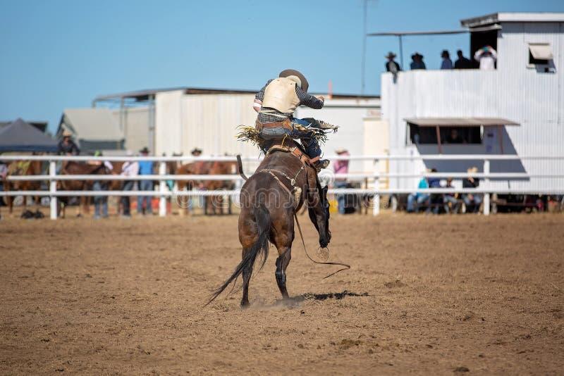 Montar a caballo Bucking a pelo del Bronc en el rodeo del país foto de archivo