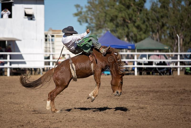 Montar a caballo Bucking a pelo del Bronc en el rodeo del país fotografía de archivo libre de regalías