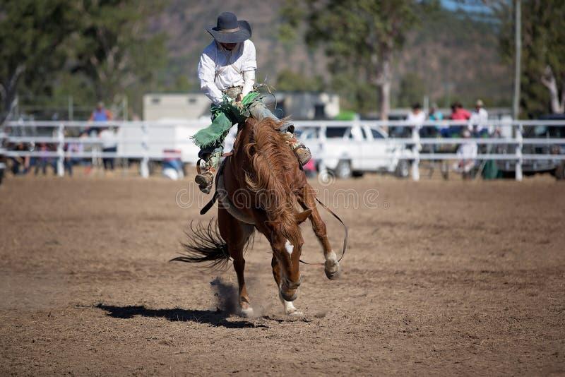 Montar a caballo Bucking a pelo del Bronc en el rodeo del país fotos de archivo