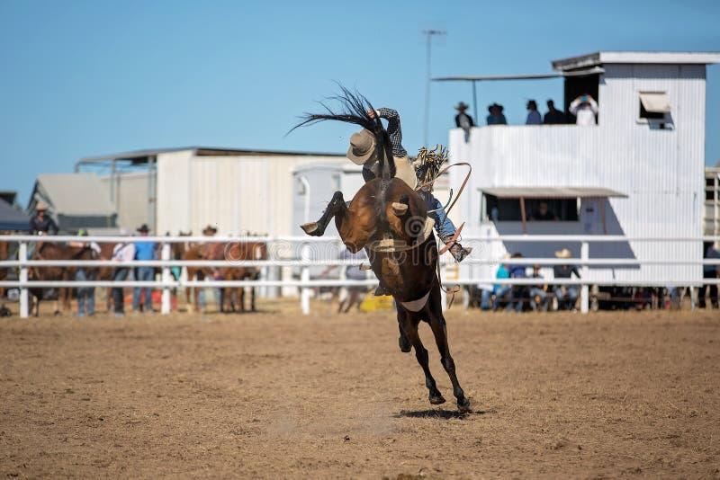 Montar a caballo Bucking a pelo del Bronc en el rodeo del país fotos de archivo libres de regalías