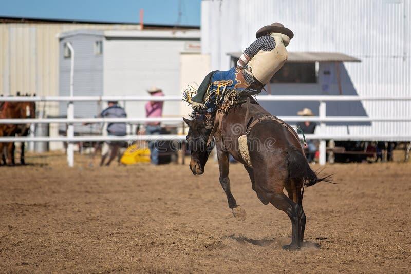 Montar a caballo Bucking a pelo del Bronc en el rodeo del país fotografía de archivo