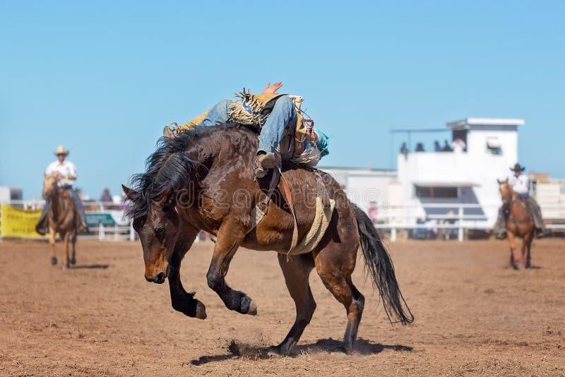 Montar a caballo Bucking a pelo del Bronc en el rodeo del país imagen de archivo libre de regalías