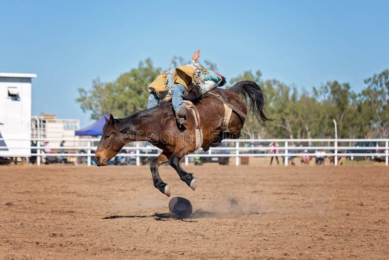 Montar a caballo Bucking a pelo del Bronc en el rodeo del país foto de archivo libre de regalías