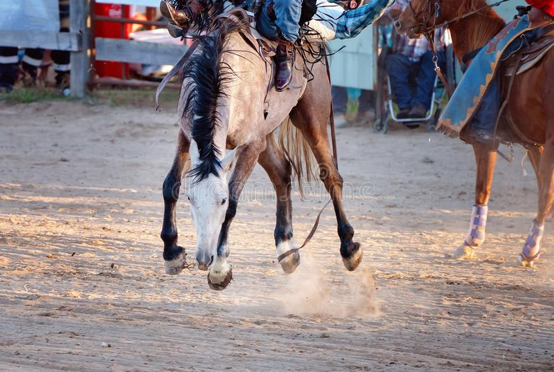 Montar a caballo Bucking a pelo del Bronc en el rodeo del pa?s foto de archivo libre de regalías