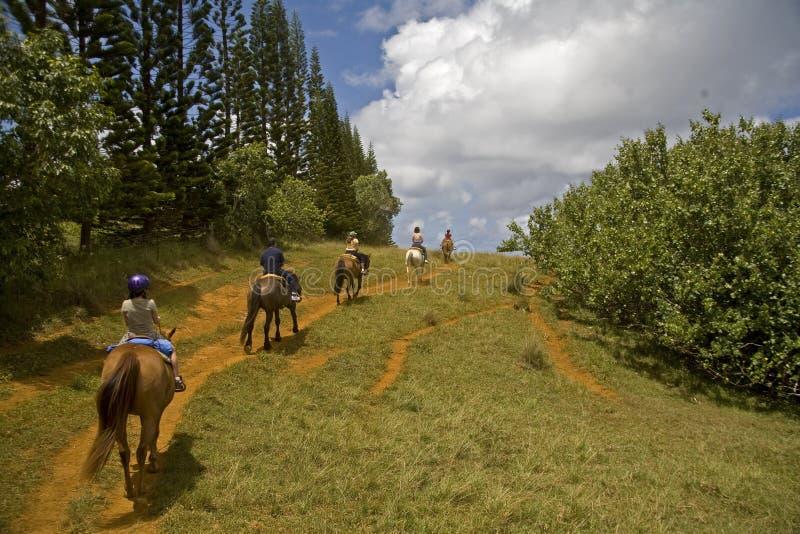 Montar a caballo a caballo fotos de archivo