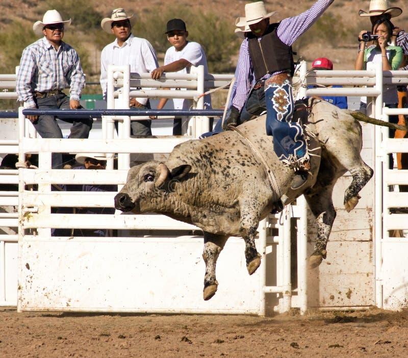 Montar a caballo de Bull del rodeo imagenes de archivo