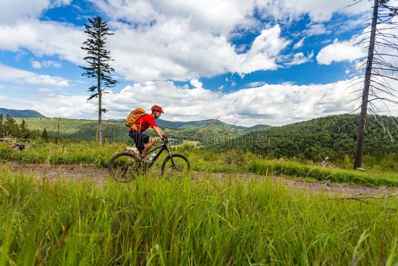 Montar a caballo de ciclo del motorista de la montaña en bosque y montañas fotos de archivo
