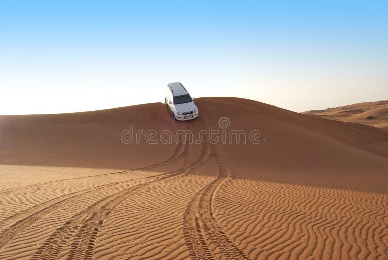 Montar a caballo de la duna en desierto árabe fotos de archivo libres de regalías