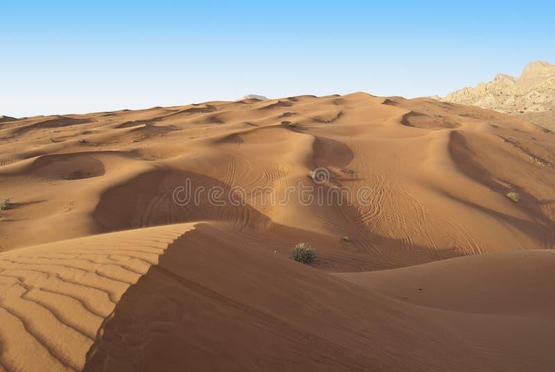Montar a caballo de la duna en desierto árabe imagen de archivo