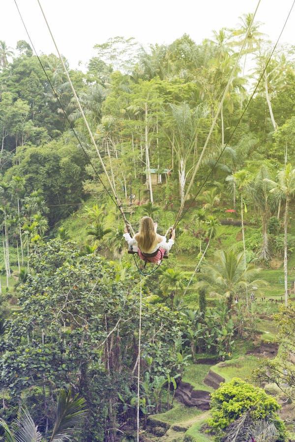 Montar a caballo de la muchacha en un oscilación sobre las terrazas del arroz en Bali imagen de archivo libre de regalías
