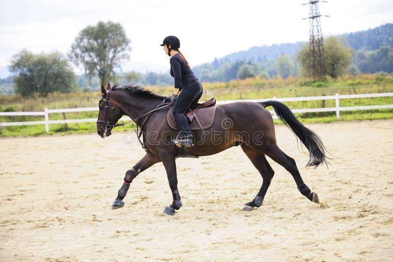 Montar a caballo de la mujer en caballo fotos de archivo libres de regalías