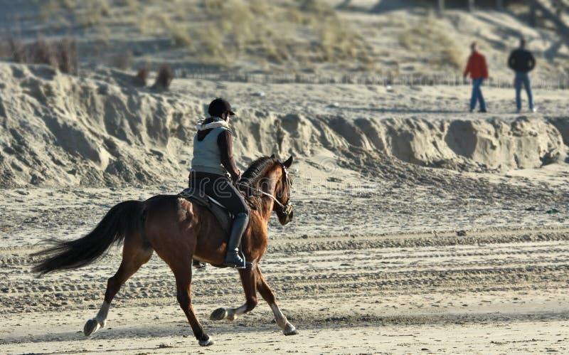Montar a caballo de lomo de caballo en la playa foto de archivo