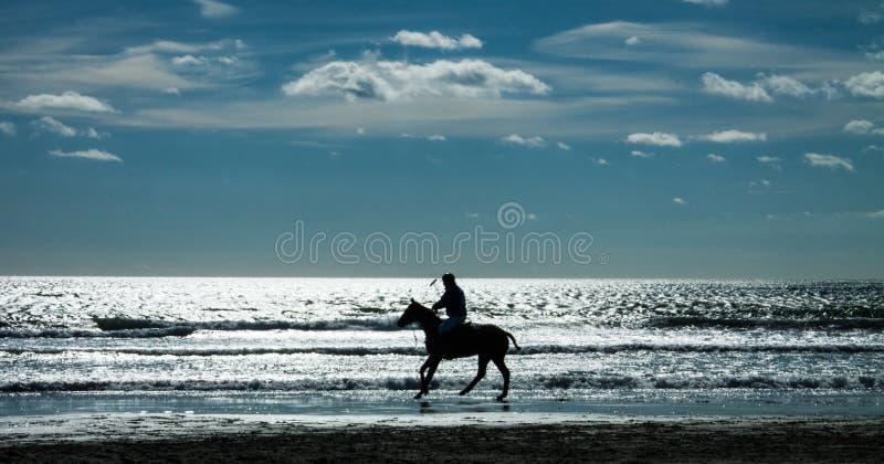 Montar a caballo de Polo Player en la playa con el cielo azul fotos de archivo libres de regalías