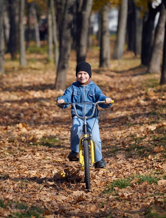 Montar a caballo en la bicicleta en parque del otoño, día soleado brillante, hojas caidas del muchacho en fondo imagenes de archivo