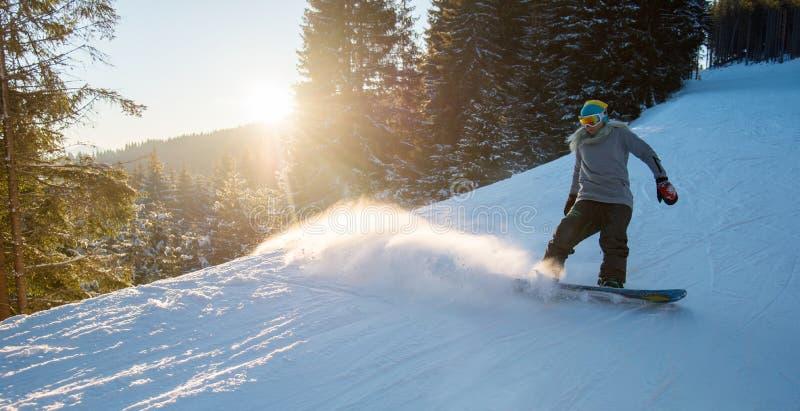 Montar a caballo profesional del snowboarder en las montañas imagen de archivo