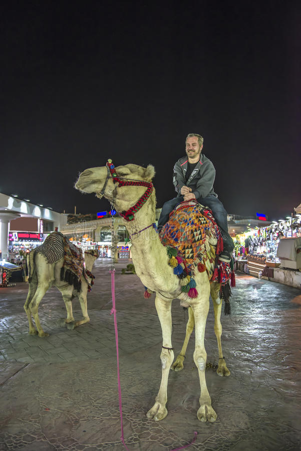 Montar un camello fotografía de archivo libre de regalías
