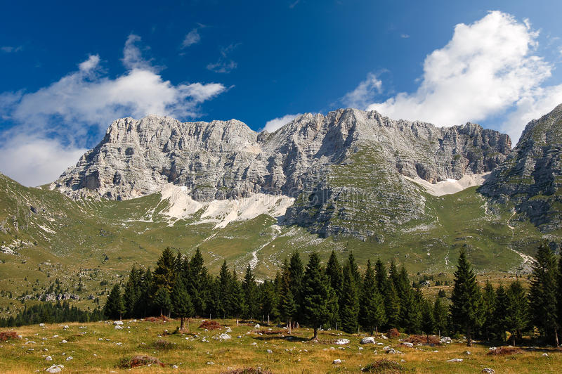 Montasio Plateau and Julian Alps. The high Plateau of Montasio with green pastures in summer and Julian Alps Jof di Montasio. Udine, Friuli Venezia Giulia, Italy royalty free stock image