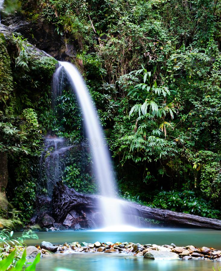Montathan瀑布长的曝光在清迈泰国密林  免版税库存照片