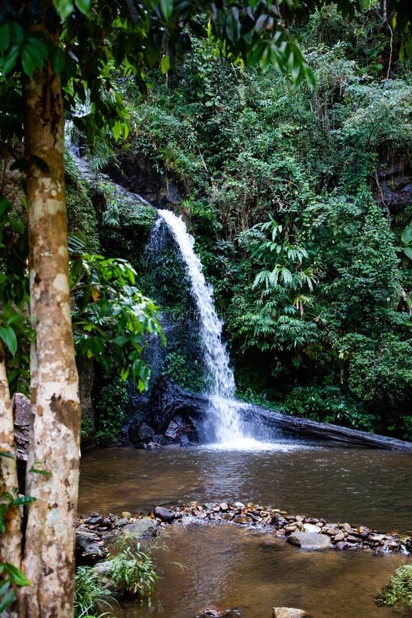 Montathan瀑布长的曝光在清迈泰国密林  图库摄影