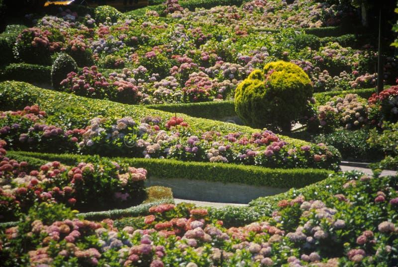 Montclair Gardens, Montclair, NJ stock photo