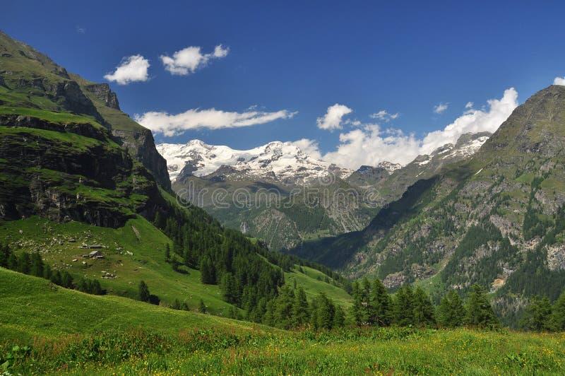 Monte罗莎, Aosta谷,意大利 库存图片