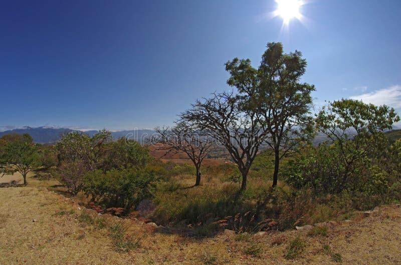 Monte Alban stockbild