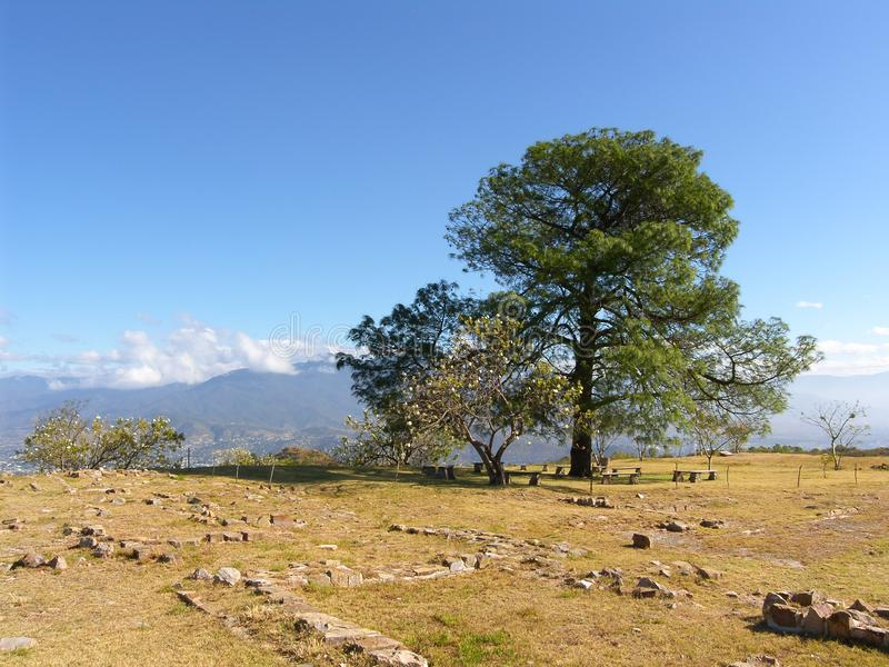 Monte Alban. Oaxaca, Mexico - Zapotec archaeological site in the southern Mexican state of Oaxaca stock image