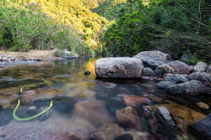 Monte Arcosu Mountain Park dans Sardegna image libre de droits