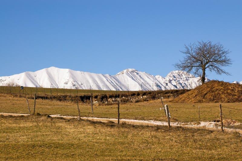 Monte Baldo το χειμώνα - Βένετο Ιταλία στοκ φωτογραφία με δικαίωμα ελεύθερης χρήσης