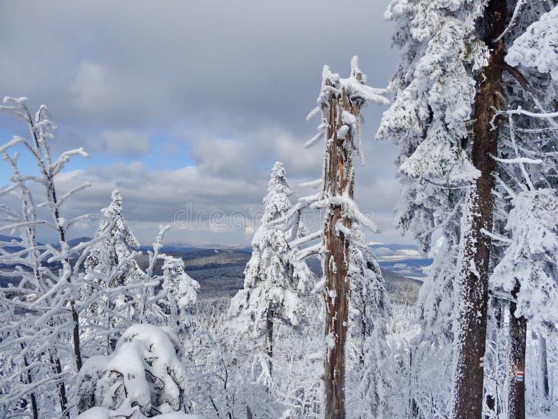 Monte brincado, distrito de Liberec, República Checa, fotos de stock royalty free