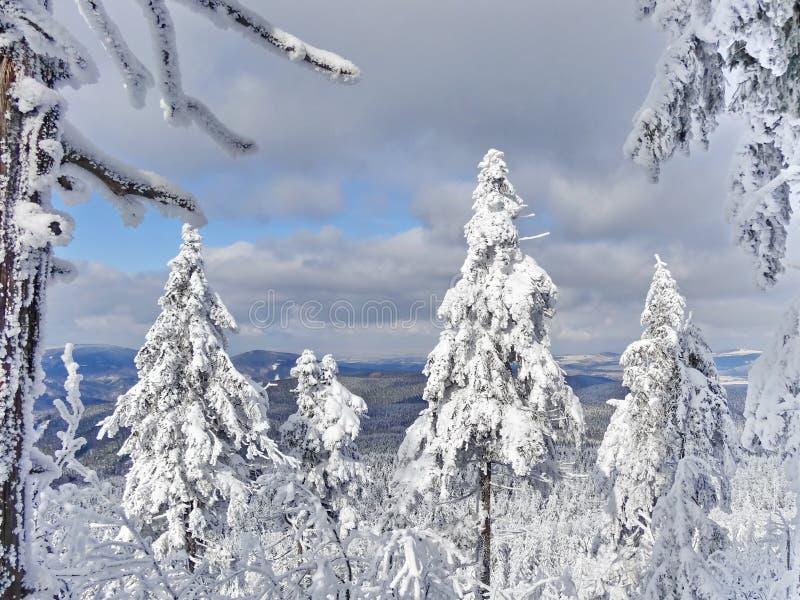Monte brincado, distrito de Liberec, República Checa, fotografia de stock royalty free