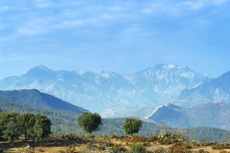Monte Cinto-Spitze in Korsika-Insel lizenzfreies stockbild
