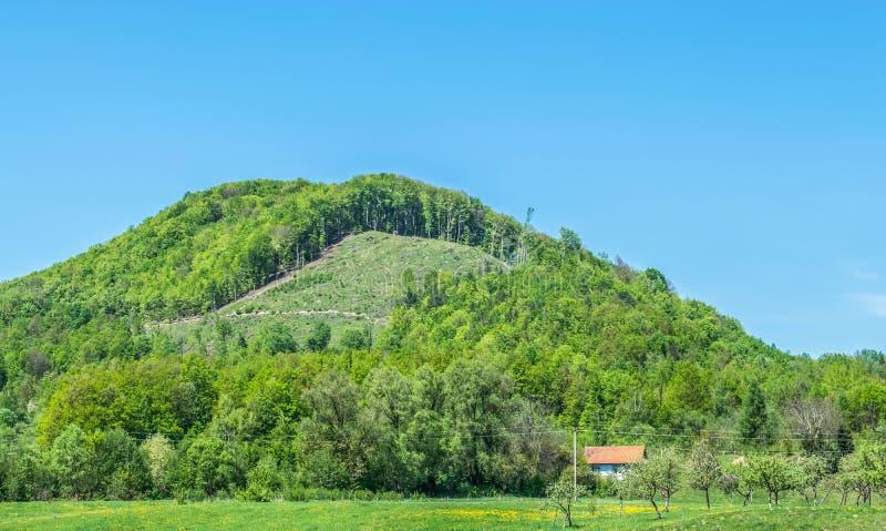 Monte com traços de desflorestamento fotografia de stock royalty free