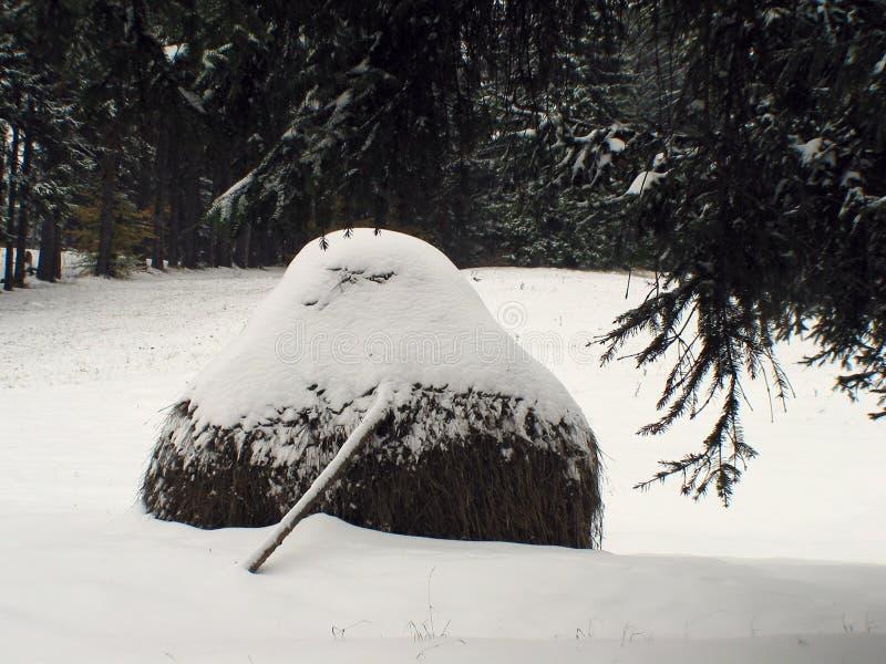 Monte de feno no meio do inverno coberto pela neve fotos de stock royalty free