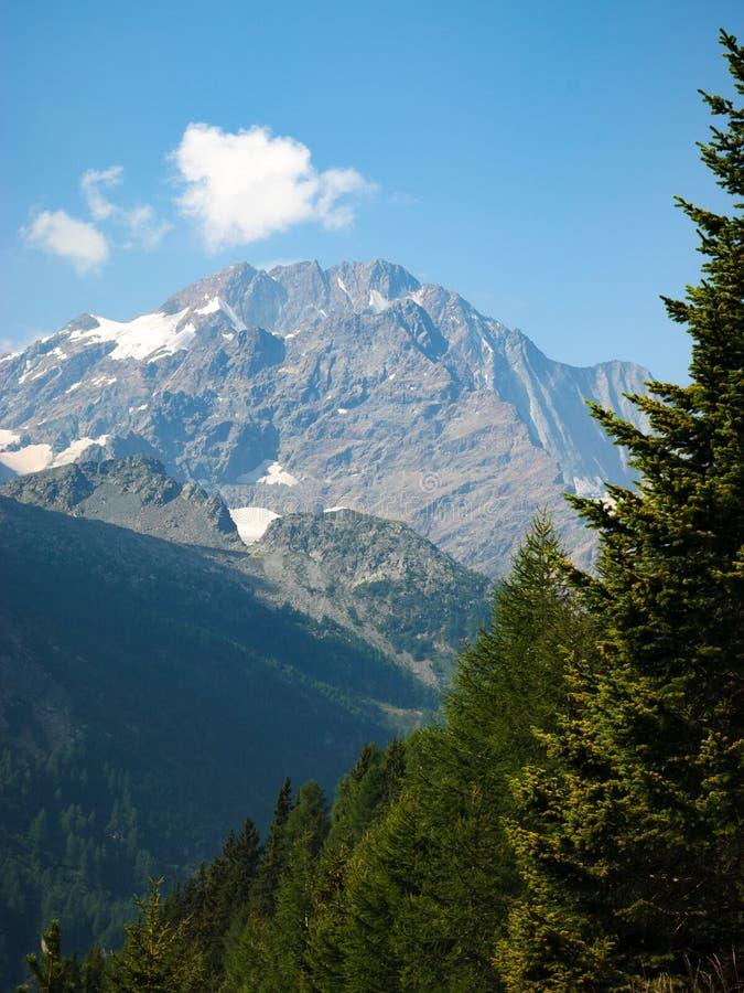 Monte Disgrazia royaltyfria bilder