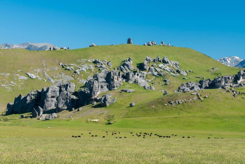 Monte do castelo sobre o campo de vidro, montanha alpina do sul dos cumes no parque nacional da passagem do ` s de Arthur imagens de stock royalty free