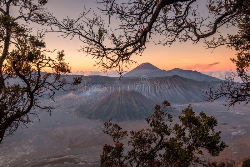 Monte el volcán un active con el marco del árbol en la salida del sol fotografía de archivo libre de regalías