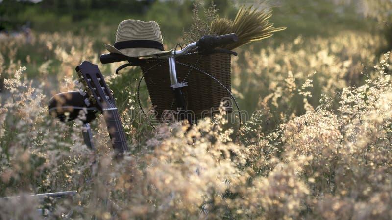 Monte en bicicleta con la cesta y la guitarra de flores en prado imagen de archivo libre de regalías