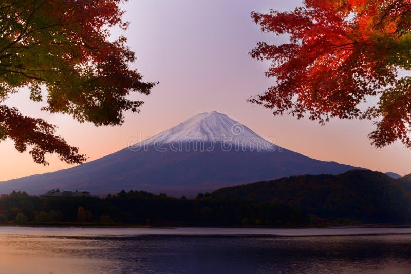 Monte Fuji no outono fotografia de stock royalty free