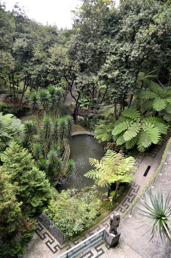 Monte Palace Green Tropical Gardens-Gangen royalty-vrije stock foto's