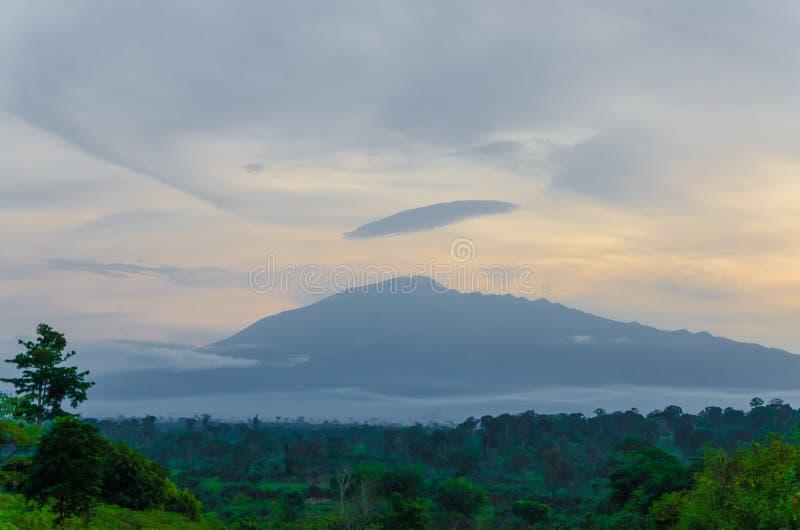 Monte República dos Camarões na distância durante a luz da noite com céu nebuloso e floresta tropical, África fotos de stock