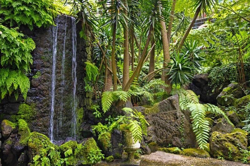 Monte uprawia ogródek, Funchal, madery wyspa, Portugalia obraz royalty free