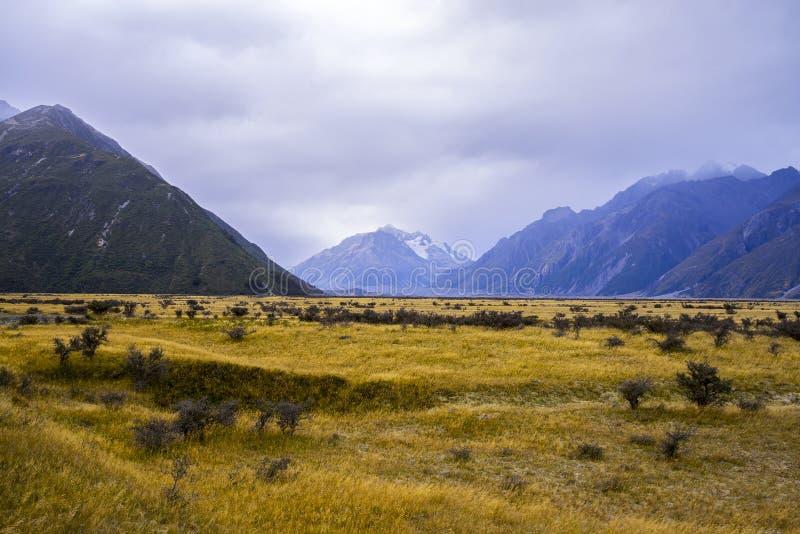 Monte vales de Tasman, cume do sul de parque nacional do cozinheiro de Aoraki Mt imagens de stock royalty free